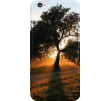 Morning shadows... On the foot of the Majuba Mountain, Natal, South Africa. iPhone Case/Skin