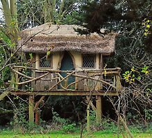A Little Fairy Tale House by Alexandra Lavizzari