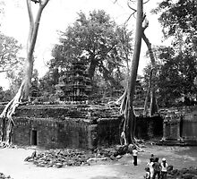 Ta Prohm Temple, Siem Reap Cambodia by gordo13