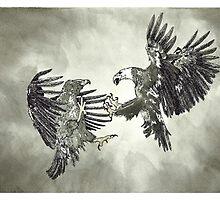 Eagles Fighting - www.jbjon.com by Jonathan Baldock
