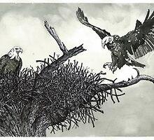 Eagles Nest - www.jbjon.com by Jonathan Baldock