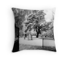 The Pearly Gates Throw Pillow