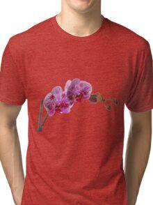 Purple Phaleanopsis Orchid on white background Tri-blend T-Shirt