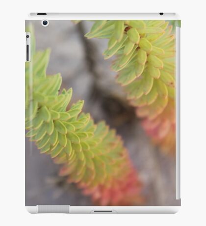 Sand Dune iPad Case/Skin