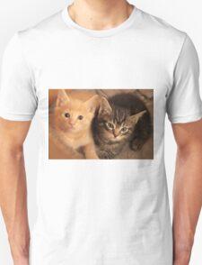 kittens Unisex T-Shirt