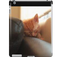 sleeping in the sun iPad Case/Skin