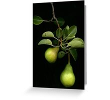 Quarry Hill Collection  Pears Greeting Card
