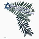 Baruch haba b'shem adonai 2 by picketty
