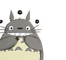 My beautiful Totoro ! by Paul Gautier