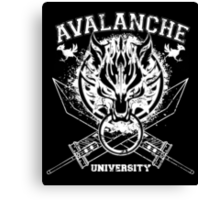 Avalanche University FVII Canvas Print