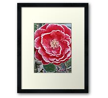 Red Rose - Icy Pedals Framed Print