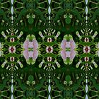 Green Grows My Garden by owlspook