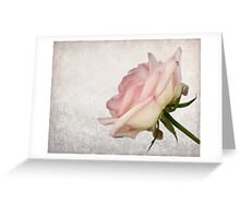 A Touch of Pink Greeting Card