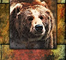 Grizzly Bear by William Martin