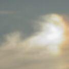 Sun Dog ! by Anne Smyth