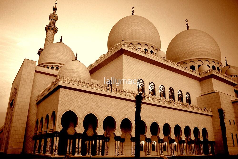 Grand Mosque - Abu Dhabi by lallymac