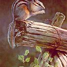 CHIPMUNK by SHARON SHARPE by sharonsharpe