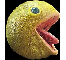 Realistic Pac Man Photographic Print