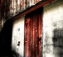 The Red Door by Karri Klawiter