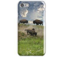 3703 iPhone Case/Skin