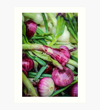 Farmers Market Red Onions Art Print