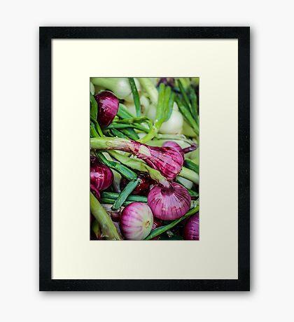 Farmers Market Red Onions Framed Print