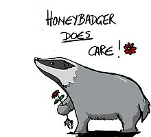 Honeybadger does care! by alexsoly