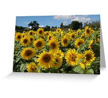 Dordogne,Lot,Provence no Herefordshire! Greeting Card