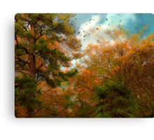 A Song of Many Colors Canvas Print