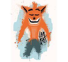 Lab Rat Crash Photographic Print