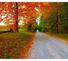 Old Road to Scotsdale Farm - www.jbjon.com by Jonathan Baldock