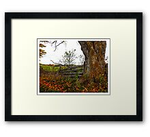 Old Tree becide wood fence - www.jbjon.com Framed Print