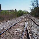 Cross Tracks by Brian Willocks