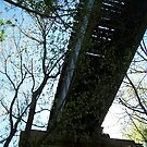 Train Bridge by Brian Willocks