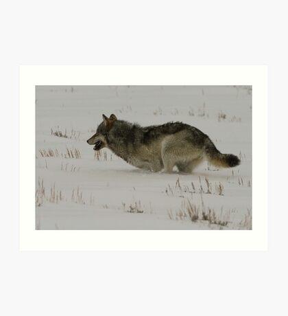 Winter Athlete Art Print