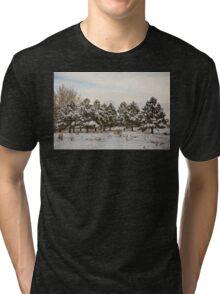 Snowy Winter Pine Trees Tri-blend T-Shirt