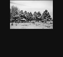 Snowy Winter Pine Trees In Black and White Hoodie