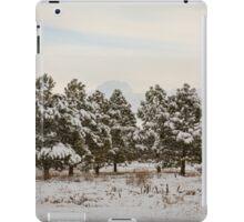 Snowy Winter Pine Trees iPad Case/Skin