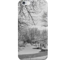 Winter Creek in Black and White iPhone Case/Skin