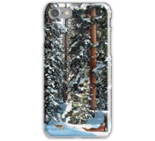 Dog Sled in the Douglas Fir iPhone Case/Skin