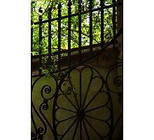 Garden Gate, Charleston, SC Photographic Print