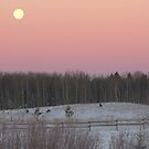 Moonset by Kathi Arnell