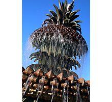 Pineapple Fountain #2, Charleston, SC Photographic Print