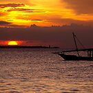 Zanzibar Dhow Sunset by Matt  Streatfeild