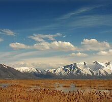 Provo Airport - Looking South-East by Ryan Houston