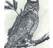 Great Horned Owl - www.jbjon.com by Jonathan Baldock