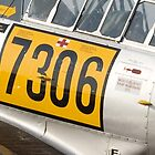 North American T6/Harvard #7306 Detail by Paul Lindenberg