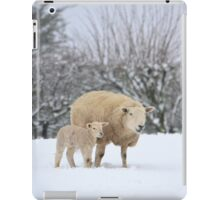 Mum and Baby in the snow iPad Case/Skin
