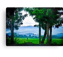 Did I also mention Rwanda is beautiful? Canvas Print
