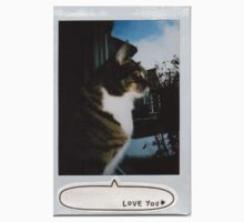 window kitty polaroid by iwilltakethebow